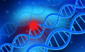 Nucleic acid (DNA) sequence control