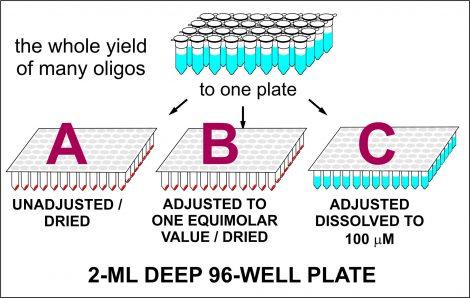 Oligos on deep 96-well plate