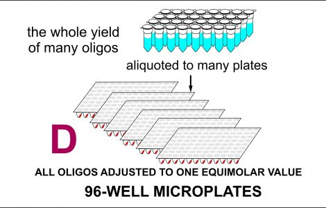 Oligos on 96-well microplate